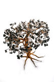 Electronic Bonsai Tree Stock Images