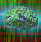 Electronic Brain Stock Photo