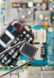 Electronic chip in tweezers stock images
