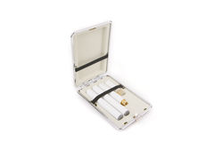 Electronic Cigarette in Carrying Case Stock Photo