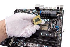 Electronic collection - Installation of processor Royalty Free Stock Image