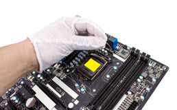 Electronic collection - Installation of processor Royalty Free Stock Photo