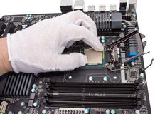 Electronic collection - Installation of processor Royalty Free Stock Images
