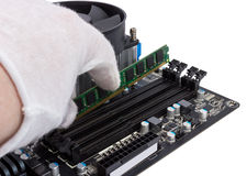 Electronic collection - Installing memory module in DIMM slot on Stock Image