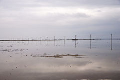 Electronic line poles. Set a line with nice reflection image on a lake bank Royalty Free Stock Image