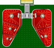 Electronic respiratory organs Stock Photos