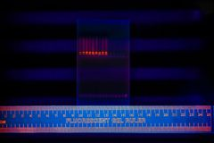 Electrophoregram of DNA separation Royalty Free Stock Photography