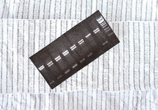 Electrophoresis picture on a crumpled DNA sequence background Royalty Free Stock Images