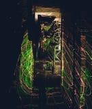 Electroregulatory lighting Royaltyfri Bild
