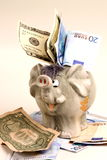 Elefant. A elefant and money on the table stock image