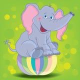 Elefant vektor abbildung