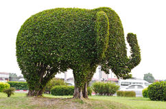 Elefant. Lizenzfreies Stockbild