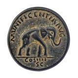 Elefant auf alter römischer Münze Lizenzfreie Stockfotos