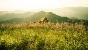 Elefant-Berg oder Galaxie-Berg Zapfen Pha Phum nationales PA Stockfotografie