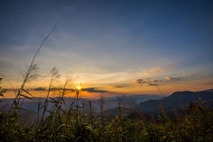 Elefant-Berg oder Galaxie-Berg Zapfen Pha Phum nationales PA Stockfotos