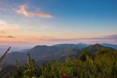 Elefant-Berg oder Galaxie-Berg Zapfen Pha Phum nationales PA Lizenzfreies Stockfoto