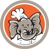 Elefant-Chef Head Cartoon Stockfoto