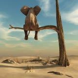 Elefant, der auf dünner Niederlassung des verwelkten Baums sitzt