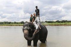 Elefant, der in Nepal badet Lizenzfreie Stockfotos
