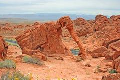 Elefant-Felsen stockbilder