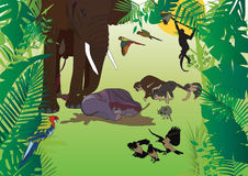Elefant-Geburt stock abbildung