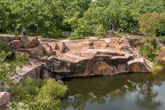 Elefant-Granit-Flusssteine ElefantNationalparks Stockfoto