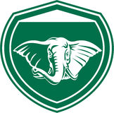 Elefant-Hauptstoßzahn Front Shield Lizenzfreie Stockfotografie