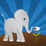 Elefant mit Marienkäfer auf Gänseblümchen Lizenzfreie Abbildung