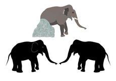 Elefant mit Stein Stockbild