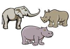 Elefant, Nashorn und Flusspferd Stockfotos
