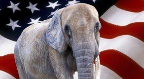 Elefant på USA-flaggan som används som bakgrund arkivfoton