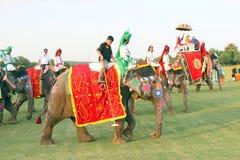 Elefant-Polo Lizenzfreies Stockfoto