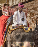 Elefant Rider At The Amber Fort Arkivfoto