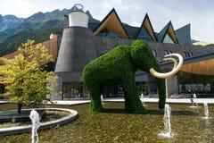 Elefant Shape Bush Royaltyfria Foton