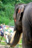 Elefant som paintaing royaltyfri bild