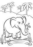 Elefant som spelar med vatten Arkivfoton