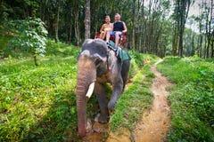 Elefant som trekking i den Khao Sok nationalparken Fotografering för Bildbyråer