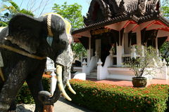 Elefant statue with oriental architecture. In Thailand Stock Photo