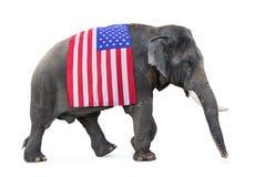 Elefant trägt eine Flagge USA Stockfoto