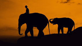 Elefant und Baby auf dem Berg Stockfotografie