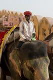 Elefant und Mahout bei Amber Fort Stockfoto