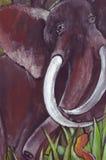 Elefant und Schlange Stockfotografie
