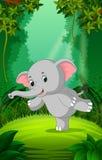 Elefant utom fara och grön skog royaltyfri illustrationer