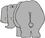 Elefant von der Rückseite Stockfotos