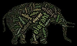 Elefant of words Royalty Free Stock Photos
