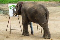 Elefant zeigt dem Publikum Fähigkeit Lizenzfreie Stockfotos