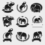Elefantaufkleber und -ikonen eingestellt Vektor Stockfoto