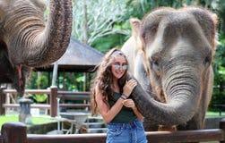 Elefante único hermoso con la muchacha en una reserva de la protección de los elefantes en Bali Indonesia fotos de archivo