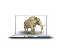 elefante 3D sul computer portatile Fotografia Stock