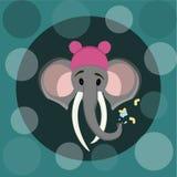Elefante 2 Fotografía de archivo